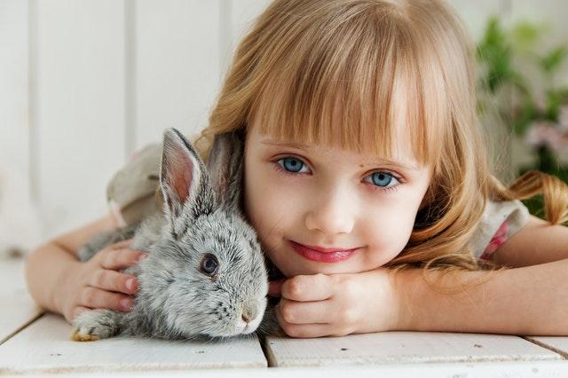 zwierzę dla dziecka